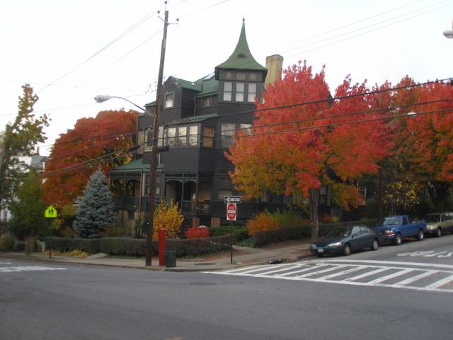 1&5 SMP, autumn